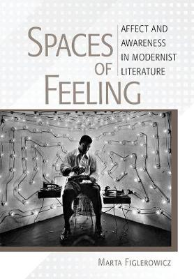 Spaces of Feeling: Affect and Awareness in Modernist Literature (Hardback)