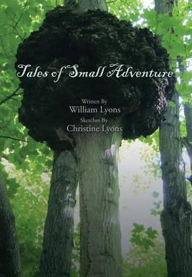 Tales of Small Adventure (Hardback)