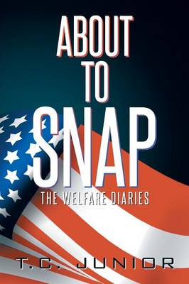 About to Snap: The Wel-Fair Diaries (Paperback)