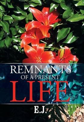 Remnants of a Present Life (Hardback)