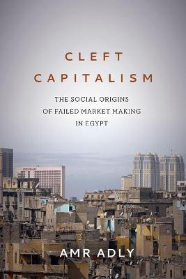 Cleft Capitalism: The Social Origins of Failed Market Making in Egypt - Stanford Studies in Middle Eastern and Islamic Societies and Cultures (Hardback)
