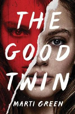 The Good Twin (Paperback)