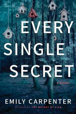 Every Single Secret: A Novel (Paperback)