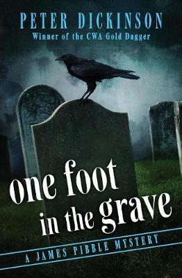 One Foot in the Grave - The James Pibble Mysteries 6 (Paperback)