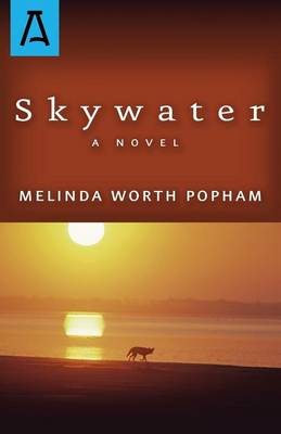 Skywater (Paperback)