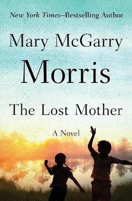 The Lost Mother: A Novel (Paperback)