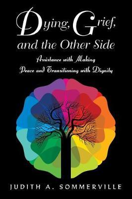 Dying, Grief, and the Other Side: Assistance with Making Peace and Transitioning with Dignity (Paperback)