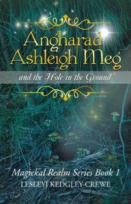 Angharad Ashleigh Meg and the Hole in the Ground: Magickal Realm Series Book 1 (Paperback)