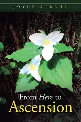 From Here to Ascension (Paperback)