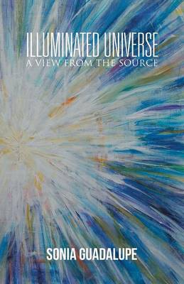 Illuminated Universe: A View from the Source (Paperback)