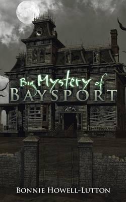 Big Mystery of Baysport (Paperback)