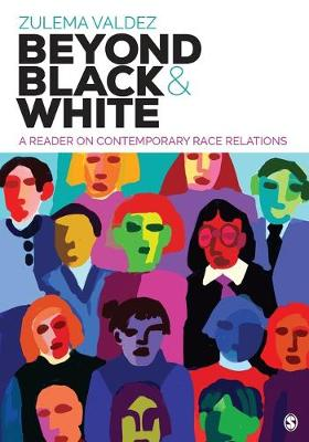 Beyond Black and White: A Reader on Contemporary Race Relations (Paperback)