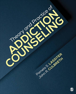 Theory and Practice of Addiction Counseling (Paperback)