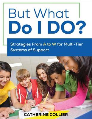 But What Do I DO?: Strategies From A to W for Multi-Tier Systems of Support (Paperback)