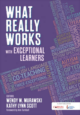 What Really Works With Exceptional Learners (Paperback)
