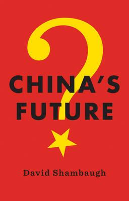 China's Future (Paperback)