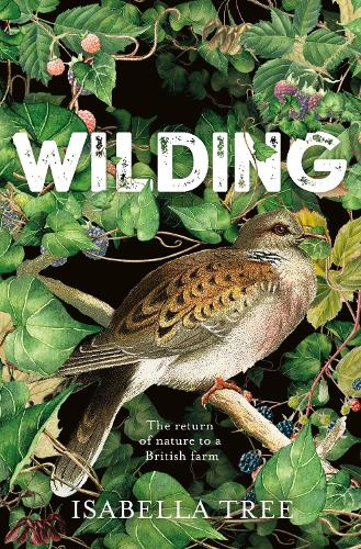 Wilding: The Return of Nature to a British Farm (Hardback)