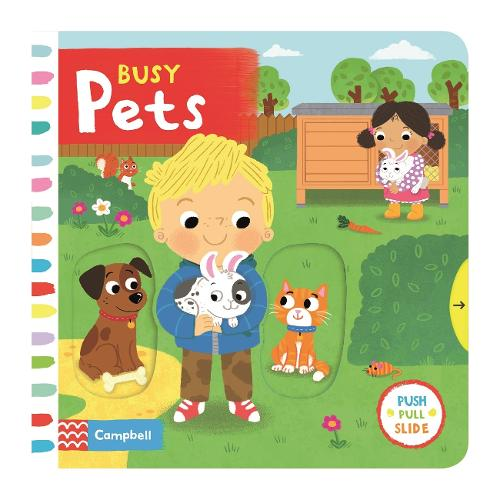 Busy Pets - Busy Books (Board book)