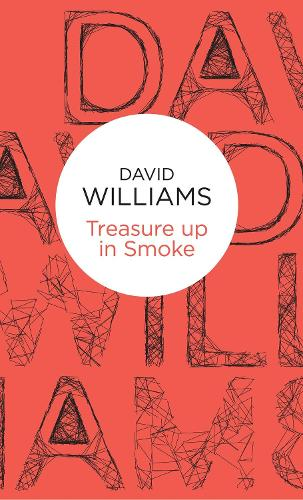 Treasure Up in Smoke - Mark Treasure Mysteries (Paperback)