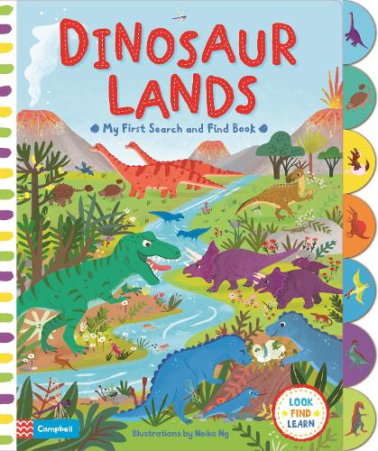 Dinosaur Lands - My First Search and Find (Board book)