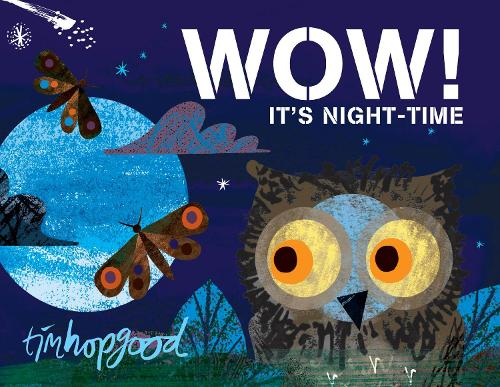 WOW! It's Night-time (Board book)