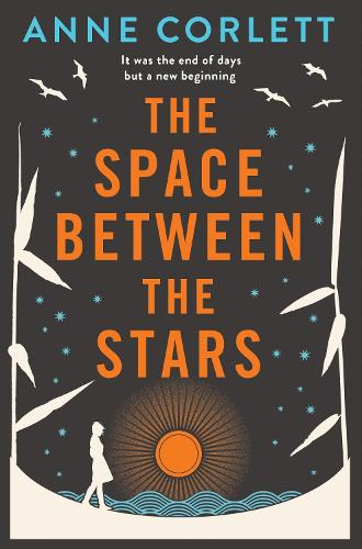 The Space Between the Stars (Paperback)