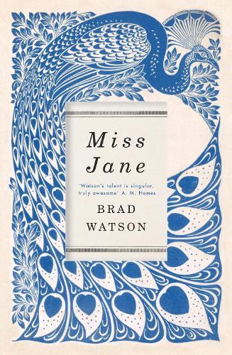 Miss Jane (Hardback)