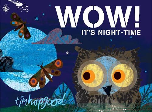 WOW! It's Night-time (Paperback)