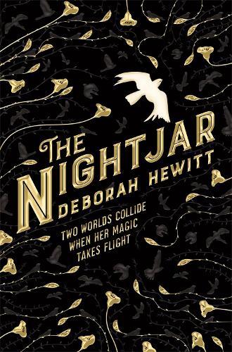 The Nightjar (Paperback)