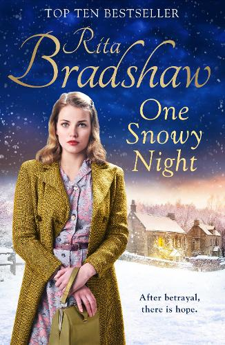 One Snowy Night (Paperback)