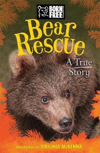Born Free: Bear Rescue - Born Free (Paperback)