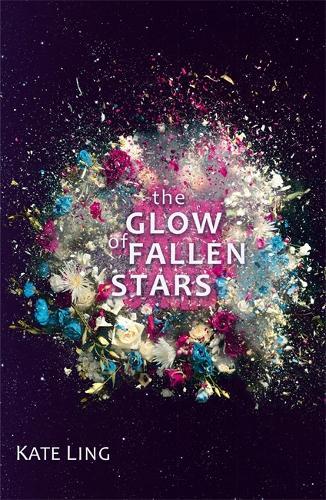Ventura Saga: The Glow of Fallen Stars: Book 2 - Ventura Saga (Paperback)