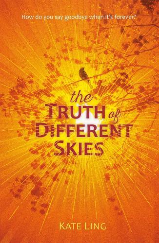 Ventura Saga: The Truth of Different Skies - Ventura Saga (Paperback)