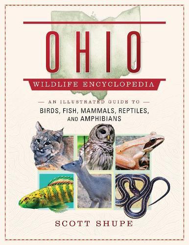 Ohio Wildlife Encyclopedia: An Illustrated Guide to Birds, Fish, Mammals, Reptiles, and Amphibians (Hardback)