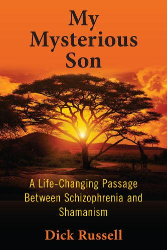 My Mysterious Son: A Life-Changing Passage between Schizophrenia and Shamanism (Paperback)