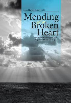 Mending of a Broken Heart: The Nature of Meaning and the Purpose That Gives Life Hope (Hardback)