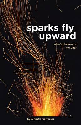 Sparks Fly Upward: Why God Allows Us to Suffer (Paperback)