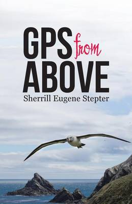 GPS from Above (Paperback)