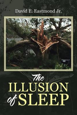 The Illusion of Sleep (Paperback)