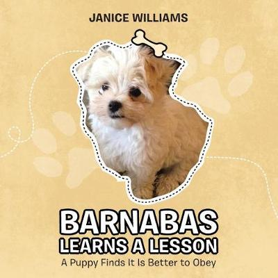 Barnabas Learns a Lesson: A Puppy Finds It Is Better to Obey (Paperback)