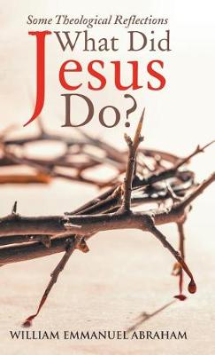 What Did Jesus Do?: Some Theological Reflections (Hardback)