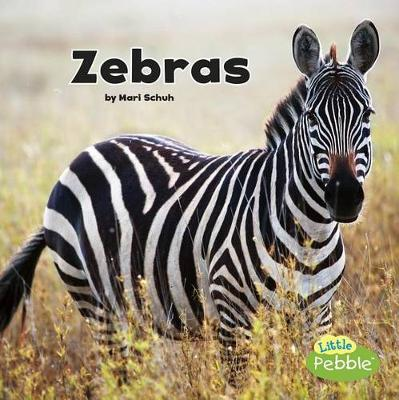 Zebras - Black and White Animals (Paperback)