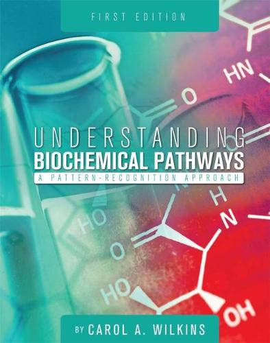Understanding Biochemical Pathways: A Pattern-Recognition Approach (Paperback)