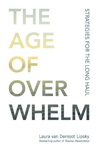 The Age of Overwhelm: Strategies for the Long Haul (Paperback)