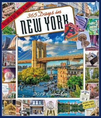 2019 365 Days in New York Picture-A-Day Wall Calendar (Calendar)