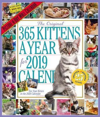 2019 365 Kittens a Year Picture-A-Day Wall Calendar (Calendar)