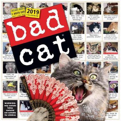 2019 Bad Cat Wall Calendar (Calendar)