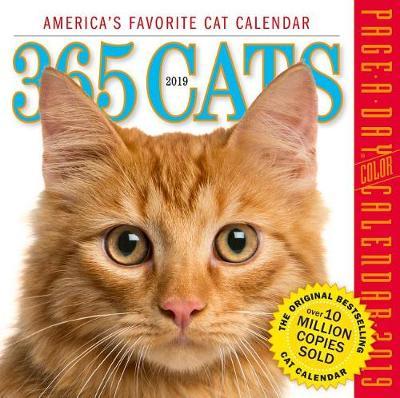 2019 365 Cats Colour Page-A-Day Calendar (Calendar)