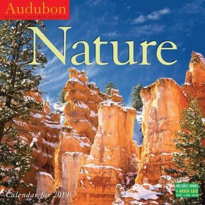 2019 Audubon Nature National Audubon Society (Calendar)