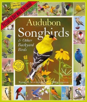 2019 Audubon Songbirds and Other Backyard Birds Picture-A-Day Wall Calendar (Calendar)